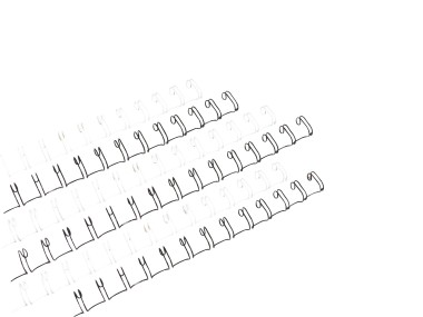 Renz Binding Wires A4 2:1-23 loop
