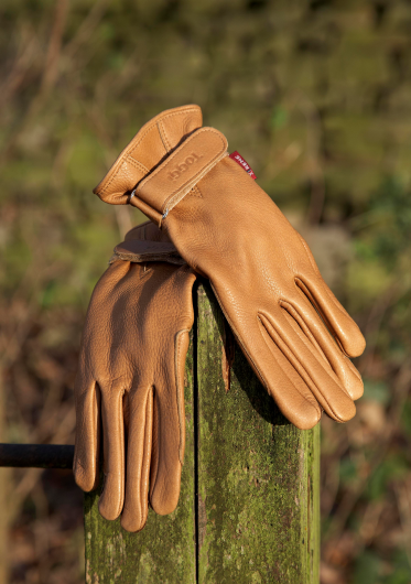 Toggi Bayham Leather Gloves - Medium