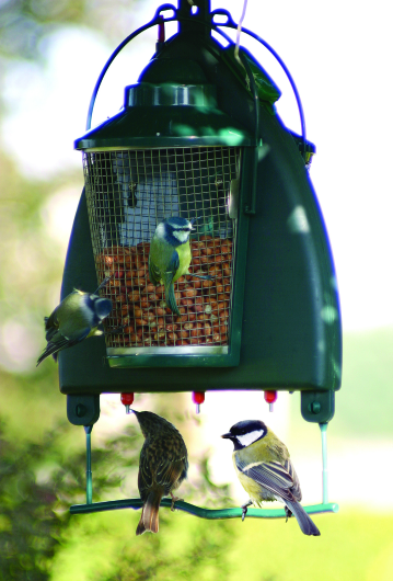 Quill Garden Bird Drinker