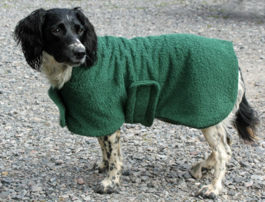 Green Towelling Dry Coat