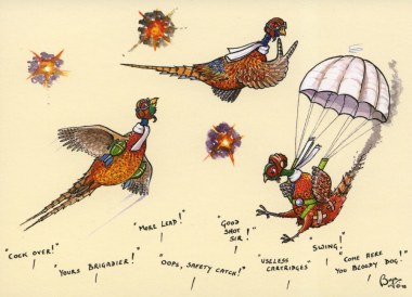 Mixed Shooting Notecards By Bryn Parry (Pack OF 10)
