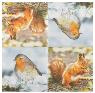 Robin & Squirrel Paper Napkins