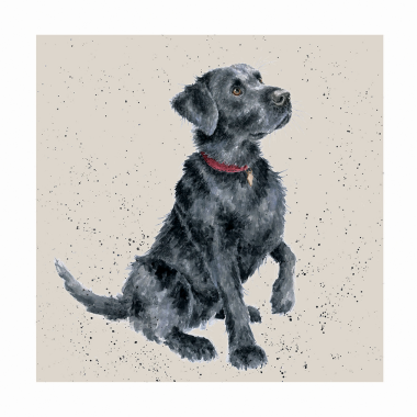 Black Labrador Greetings Card by Wrendale Designs