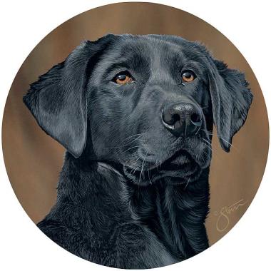 Black Labrador Stone Drink Coasters