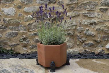 Plant Pot Feet - Owl Trio
