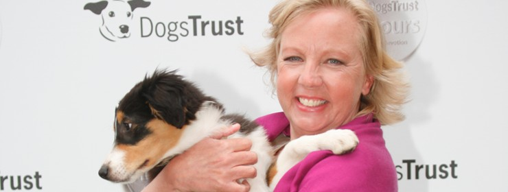 Deborah hosts top awards ceremony for dogs