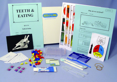 Mini Science Kit - Teeth and Eating