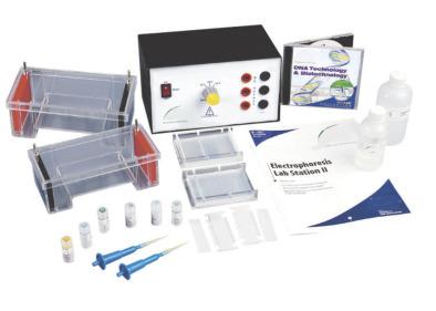 Electrophoresis Lab Station II