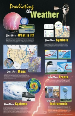 Poster: Predicting the Weather