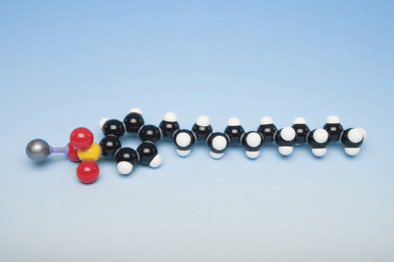 Molecular Model Kit - Detergent