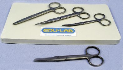 Scissors, Dissecting 110mm s/s - point ends, open shank
