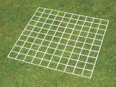 Grid Quadrat 100 squares
