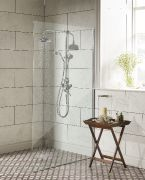 LABC Clifton exposed dual function shower system