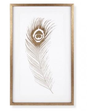 Pic 5 Peacock print