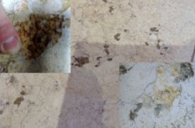 rust-stains-in-limestone-after-spalling