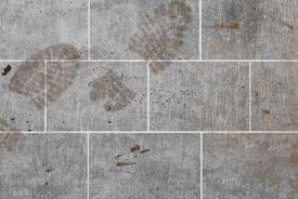 22889-Footprints-2