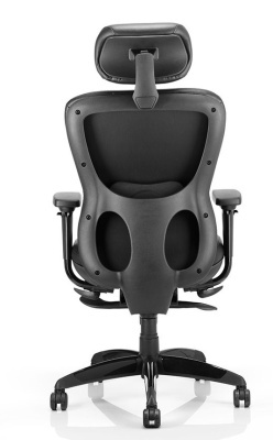 Shadow High Back Leather Task Chair Reara View