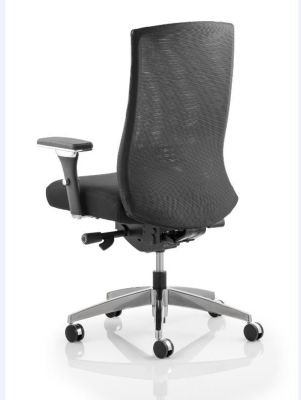 Telsa Mesh Task Chair Rear View