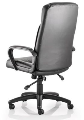 Roderigo Black Leather Executive Chair Rear View
