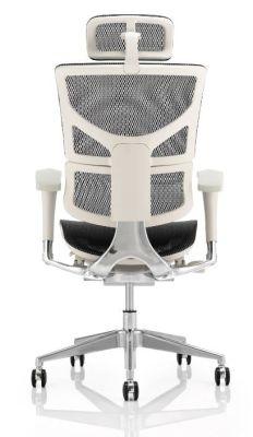 Ergo D Mesh Task Chair Grey Frame Rear View
