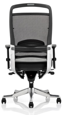 Alfonso Mesh Back Task Chair Rear View