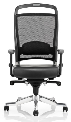 Alfonso Mesh Task Chair Front View