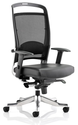 Alfonso Mesh Task Chair