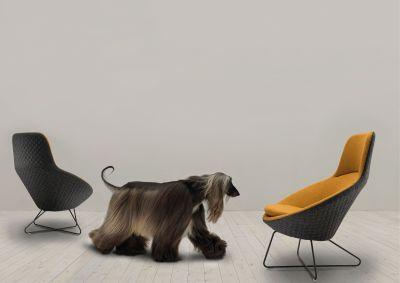 Conic Lounge Chair Mood
