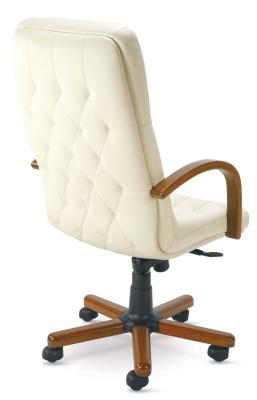Premier Executive Chair Rear View