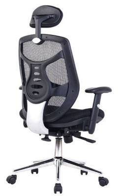 Pamelo Executive Mesh Task Chair Rear View