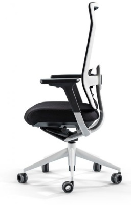 TNK Flex Chair 2