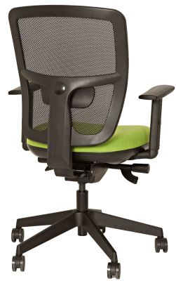 Fabre Task Chair Rear View