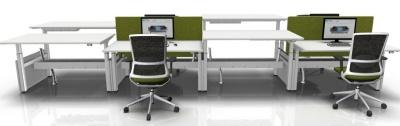 Eight Person Sit Stand Bench Desks