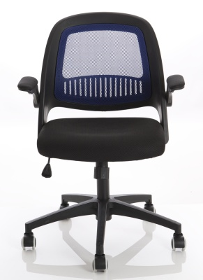 Coontect Mesh Chair With A Blue Back Front View