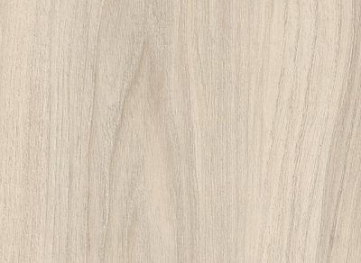H3760 White Cape Elm