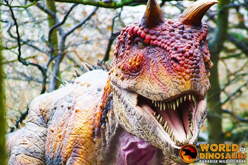 Carnotaurus 2