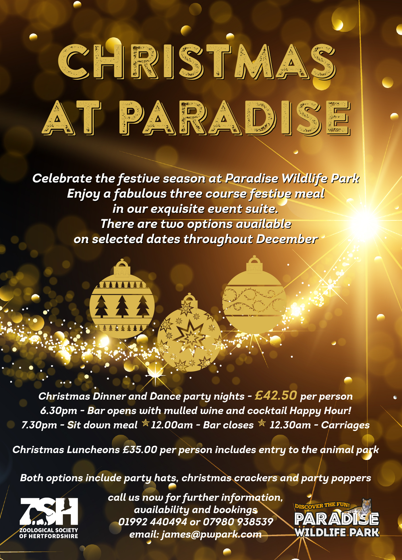 A5 Christmas Flyer with gold overprint