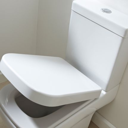 Mini Soft Close Quick Release Toilet Seat
