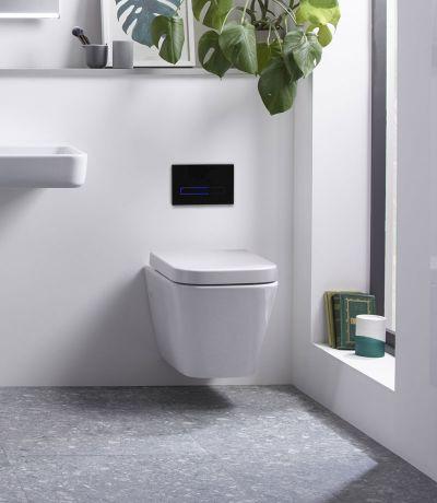 Sensor dual flush plate