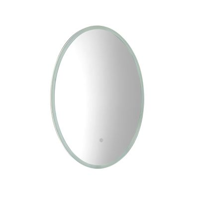 Aster 490mm Oval Mirror