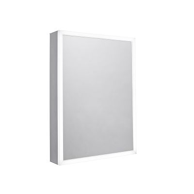 Flex Single Door Illuminated Cabinet