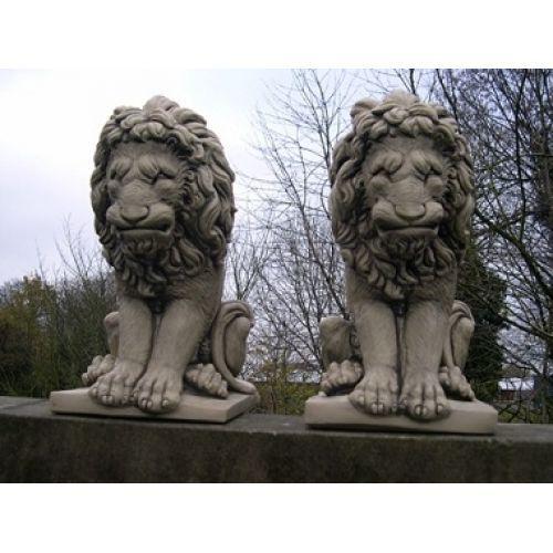 Medium Sitting Lions