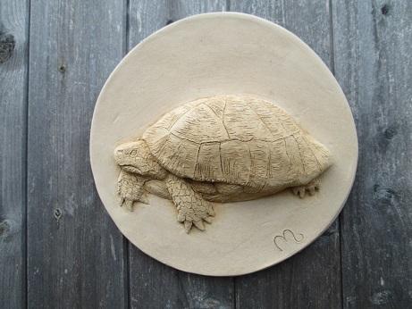 Tortoise Wall Plaque