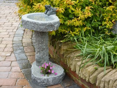 Bird Bath Planting Pot
