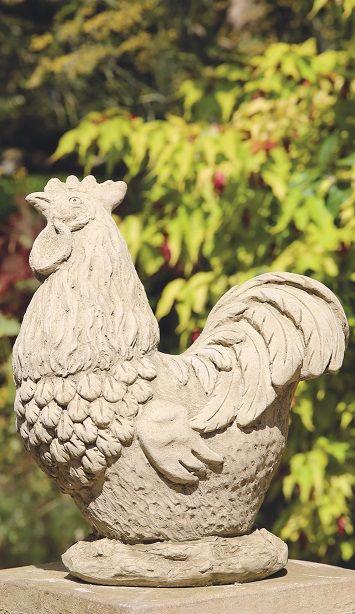 Somerset Cockerel