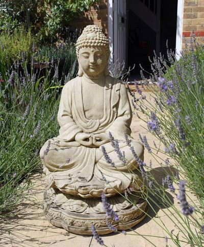 Lotus Buddha