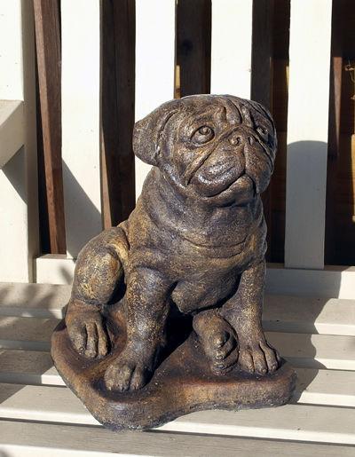 Umber Large Pug