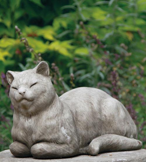 Rundies Cat