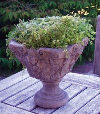 Vienna Vase 33