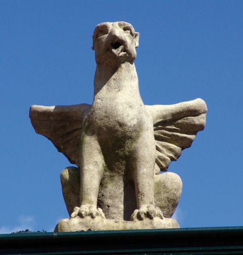 Old Griffin